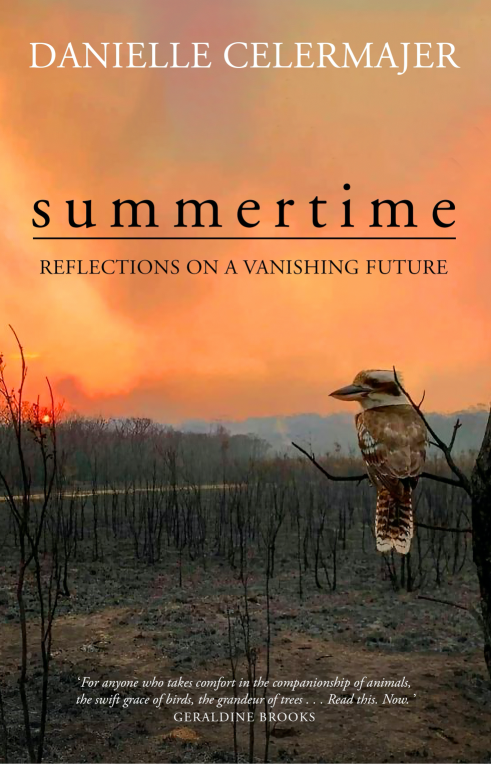 Summertime: Reflections on a vanishing future